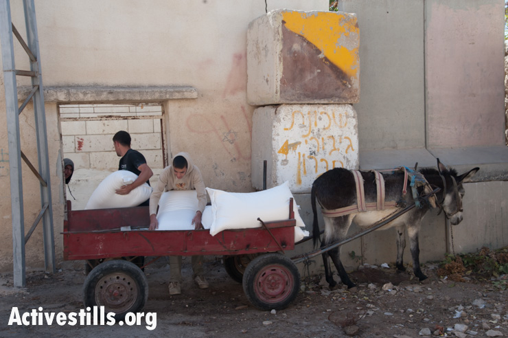Palestinians unload a donkey cart loaded with sacks of ingredients for use in a sweets shop in the H2 section of Hebron, October 22, 2013. The workers must use a donkey cart because Israelis are allowed to drive on the road accessing the shop, but Palestinians are prohibited from driving cars there without special permission, which few are able to obtain. The road connects the Ibrahimi Mosque (Tomb of the Patriarchs) in Hebron's old city with the nearby Israeli settlement Kiryat Arba.