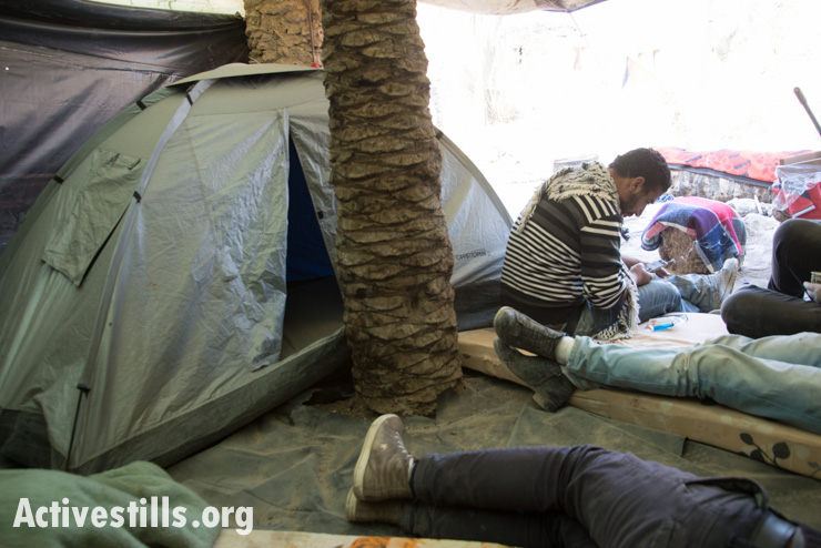 Palestinians rest in their tent in the Jordan Valley protest village of Ein Hijleh, West Bank, February 6, 2014. (photo: Activestills.org)