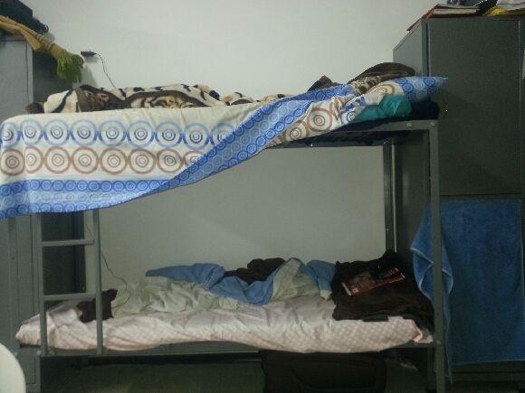 My bed, Holot, February 9, 2014. (Ahmad)