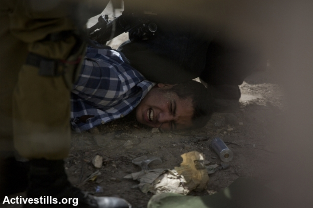 A Palestinian demonstrator is arrested by soldiers (Oren Ziv / Activestills)