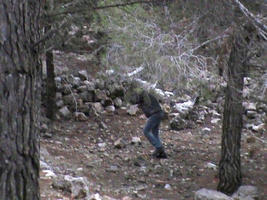 A young man carries chickens, donated by the Norwegians, through the hills and into Nabi Samuel in order to avoid harsh limitations at the Israeli checkpoint. (Photo: Nawal Barakat)