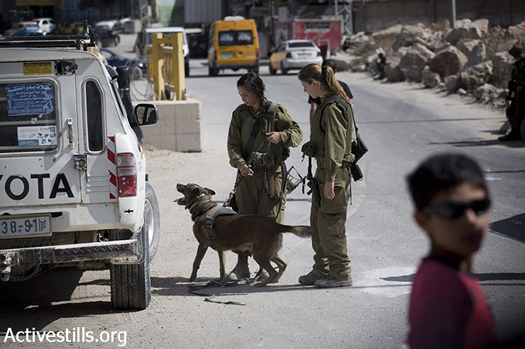 Israeli soldiers check Palestinians in a checkpoint in one of the entrances of the West Bank city of Hebron,  June 17, 2014. (Oren Ziv/Activestills.org)