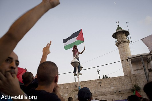 A Palestinian youth living in Israel waves a Palestinian flag during a protest against the attack on Gaza, in the city of Lod, Israel, August 3, 2014. (Oren Ziv/Activestills.org)