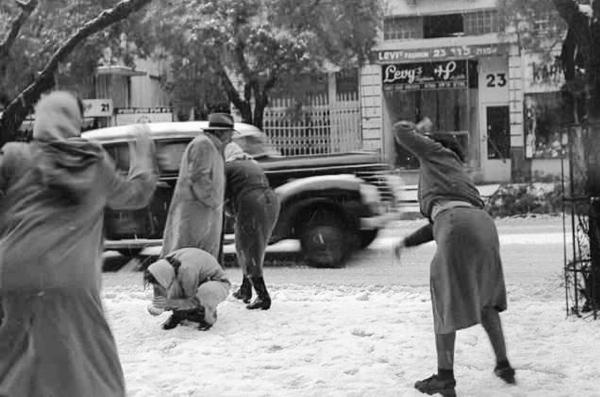 In the winter of 1950, snow fell in Tel Aviv. (photo: David Eldan, GPO)