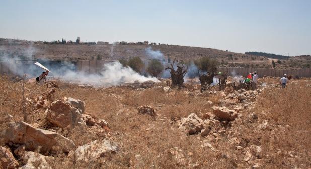 Ni'ilin under Tear Gas. Friday 3 Sep 2010. Photo by Joseph Dana.