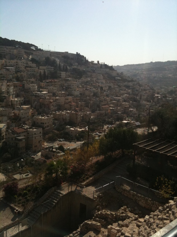 View of Silwan from City of David, East Jerusalem (Photo: Mairav Zonszein)