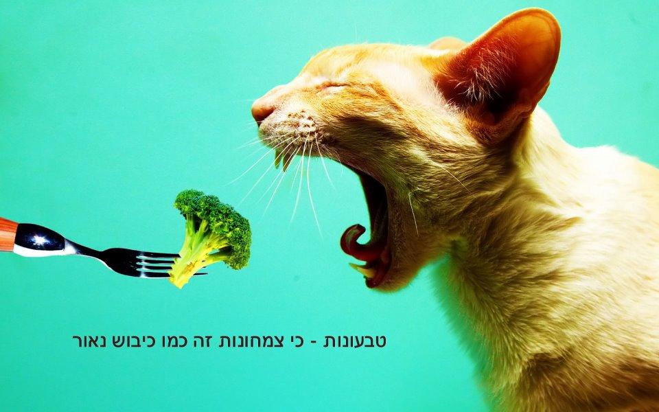 Veganism - because vegitarianism is like an enlightened occupation (Naama Morag)