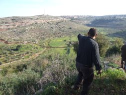 Villager overlooking Wadi a-Rasha lands and new route, 2009 (Haggai Matar)