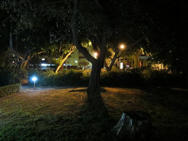 The Round Trip part 22: Night