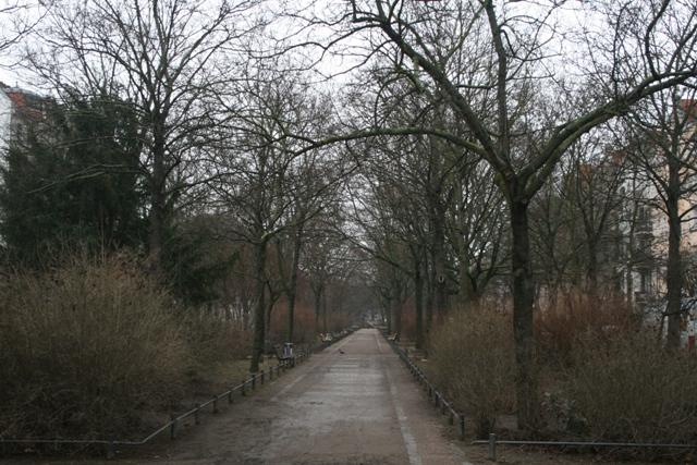 A calm, grey and tempting street in Berlin (Haggai Matar)