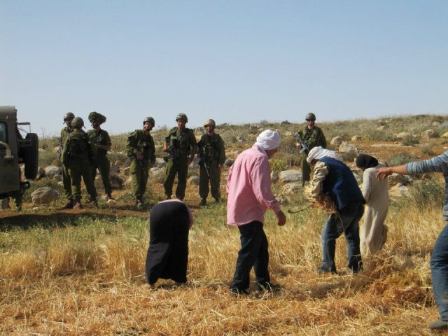 Soldiers watching Palestinian farmers during an action in South Mount Hebron (Yaniv Mazor)