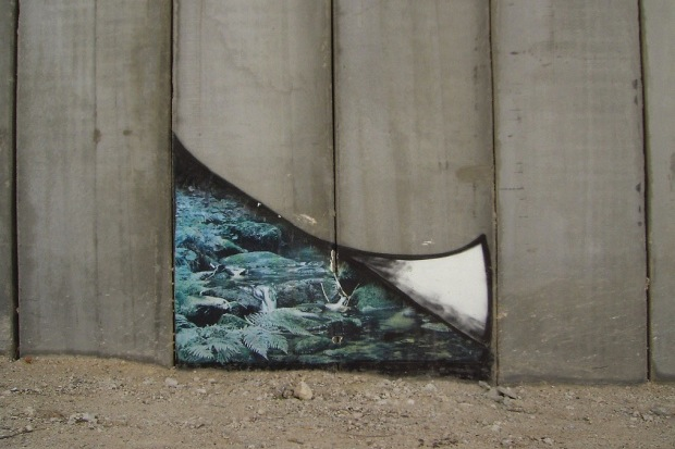 Cracks in the wall: A glimmer of hope for Israel-Palestine