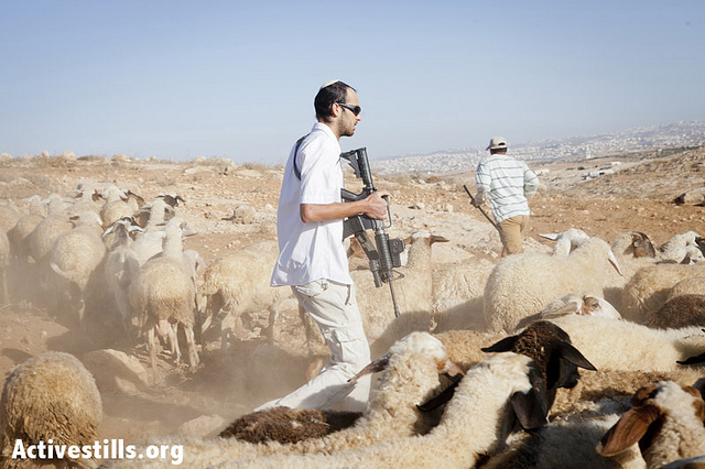 An Israeli settler from the settlement outpost of Mitzpe Yair chases away the flock and threatens the shepherds of the West Bank village of Gwawis, September 18, 2012. He is holding a M-16 rifle issued to him by the Israeli army as part of his paid job as a security coordinator. The law states that he is not allowed to take any actions outside the settlements' borders. Though all Israeli settlements in the West Bank are considered illegal under international law, Mitzpe Yair is illegal even under Israeli law. (photo: SG/Activestills.org)