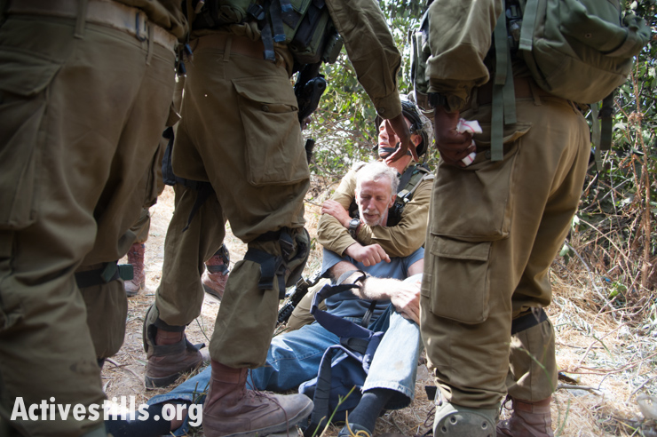 Photos: Three arrested as settlers, soldiers disrupt Hebron olive harvest