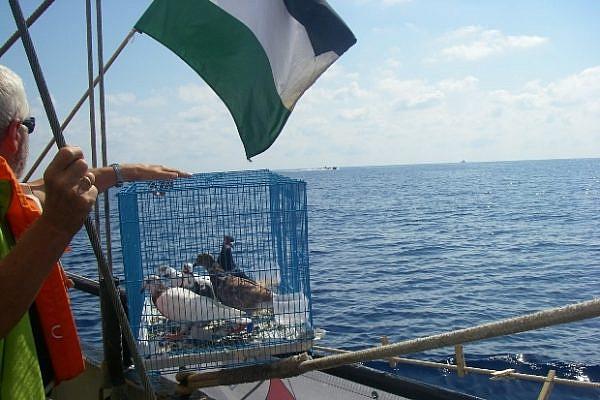 Pro-Palestinian activists aboard the SV Estelle catch sight of approaching Israeli Navy boats