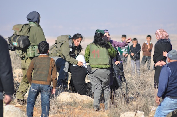 Palestinians being arrested in South Hebron Hills, January 19, 2013 (Ta'ayush activist)