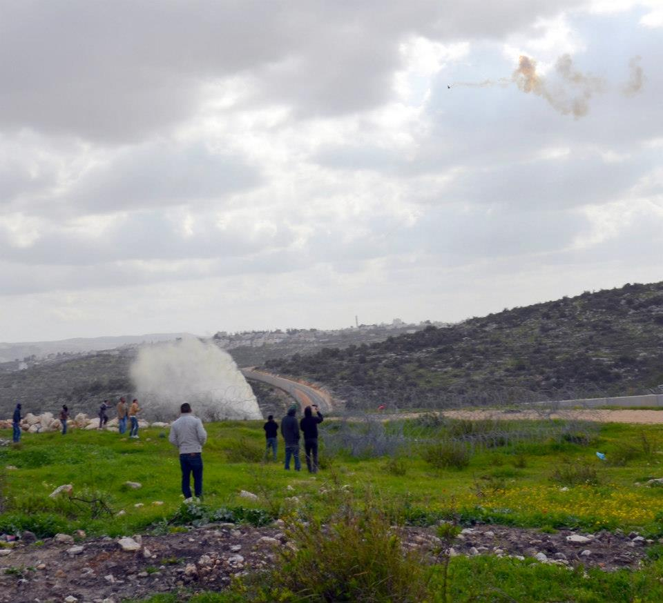 Lower left corner shows skunk water, upper right corner a tear gas canister in mid flight (photo: Ami Kaufman)