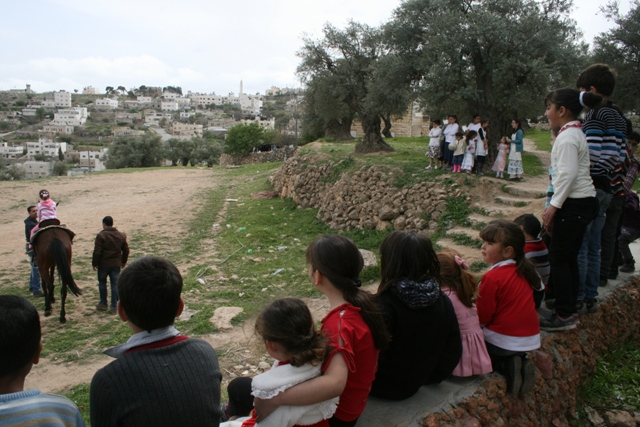 Two groups watching a horse. West Bank Story (Haggai Matar)