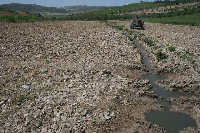 Small stream of sewage running through village lands (Haggai Matar)