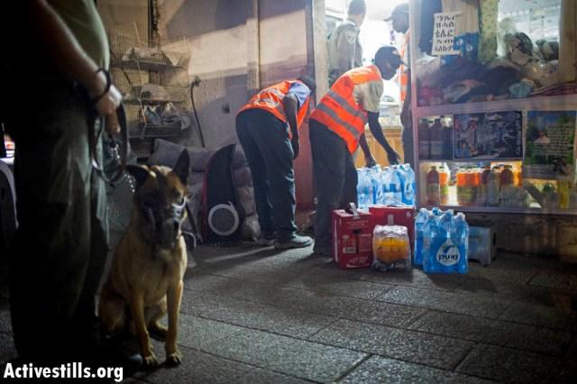 Policeman and attack dog watch over African workers emptying asylum seeker's store (Oren Ziv / Activestills)