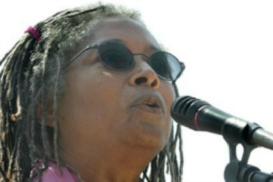 NY Consul General tells Alice Walker when she may criticize Israel