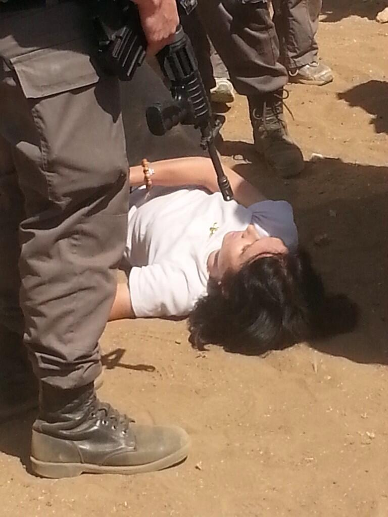 PHOTO: French diplomat at the feet of Israeli troops