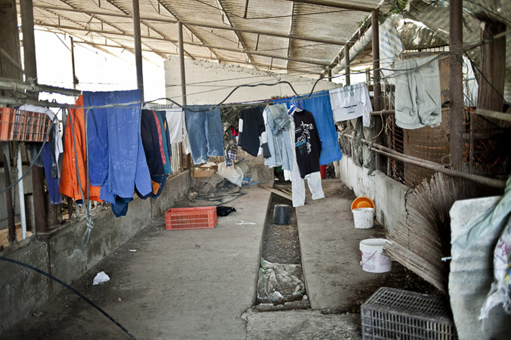 Workers' clothes hang outside their residence, Kfar Varburg, August 31, 2013. (Shiraz Grinbaum/Activestills.org)