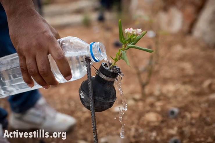 PHOTOS: What the press missed in Bil'in tear gas flower garden