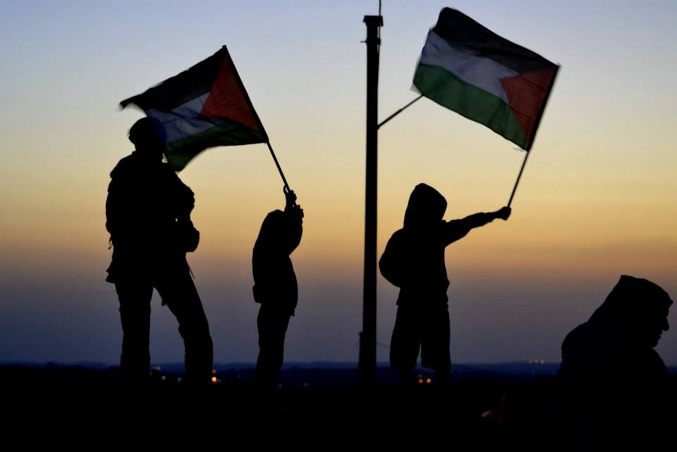 From Italy to Israel/Palestine: Activists share insights on popular struggle