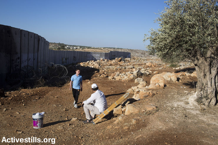 PHOTOS: Israel 'punishes' Ni'ilin activist, denies access to olive trees behind the wall