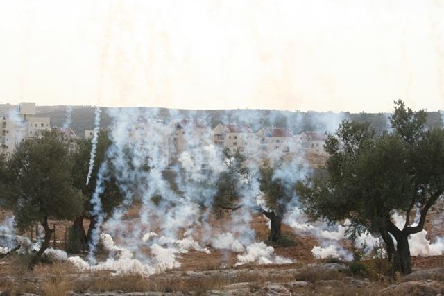 Tear gas descending (Haggai Matar)