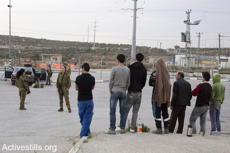 Palestinian detainees stand in Tapuah Junction while Israeli soldiers guard them, Tapuah Junction, West Bank, December 3, 2013. In the background soldiers from the Oketz canine unit search the Palestinian's car.