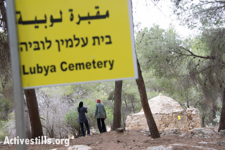Palestinian citizens of Israel visit the remains of the village of Lubya (Activestills)