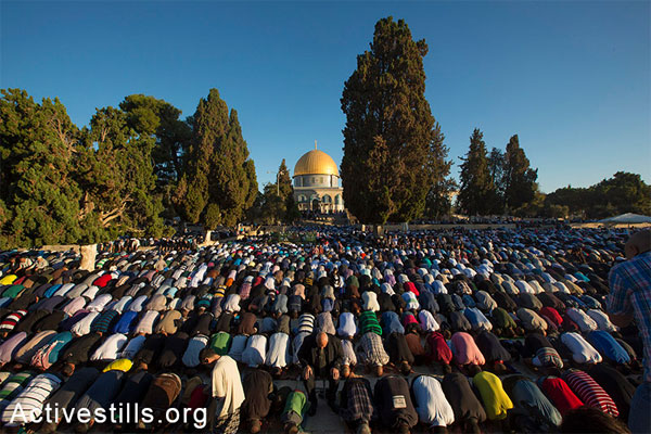 Palestinian Muslim worshipers pray at the al-Aqsa Mosque compound in Jerusalem's old city on the first day of Eid al-Adha (Feast of the Sacrifice) marking the end of the hajj and commemorating Abraham's willingness to sacrifice his son Ismail on God's command, on October 4, 2014. (Activestills.org)