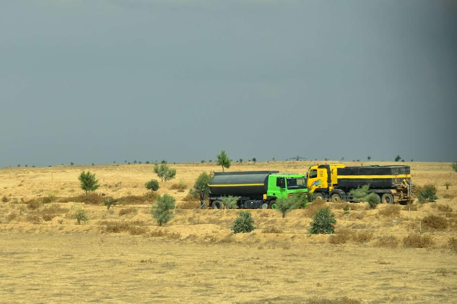 Tanker trucks bring water to trees planted by the Jewish  National Fund at Al Araqib in the Naqab (Negev). (photo: Cinzia Di Napoli)