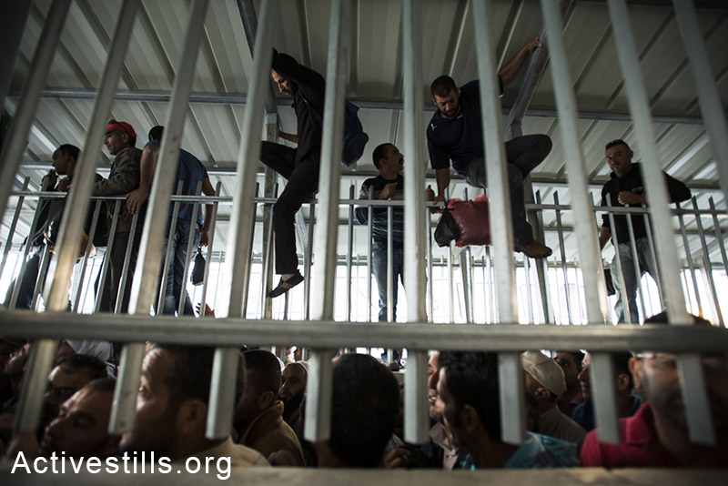 Palestinians climb the fence in order to jump the line as Palestinians from the West Bank with permits to enter Israel wait at the Israeli military checkpoint in the separation wall controlling movement between Bethlehem and Jerusalem, June 12, 2014. By: Ryan Rodrick Beiler/Activestills.org