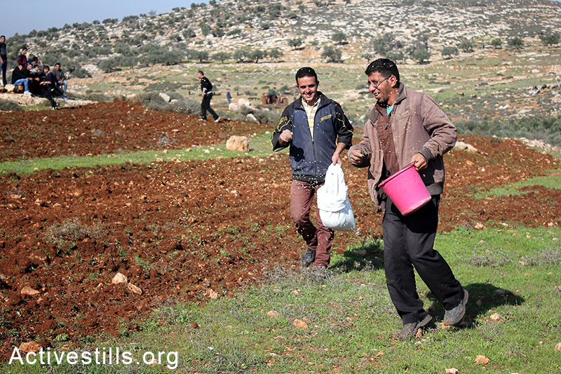 Palestinian farmers sow their lands located behind a settlers' by-bass road, at Salem village, Nablus, West Bank, December 05, 2014.  Photo by: Ahmad al-Bazz/Activestills.org