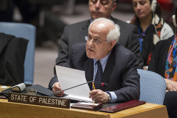 The representative of Palestine speaks to the UN Security Council. (UN Photo/Loey Felipe)