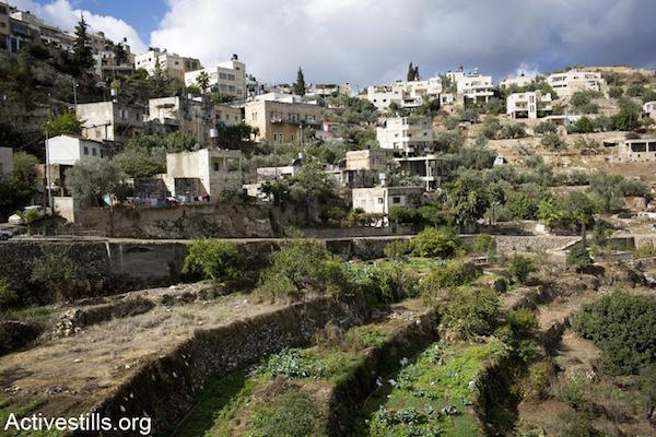 A general view of the unique environmental and agricultural system in the West Bank village of Battir, November 13, 2012. (Photo by Oren Ziv/Activestills.org)