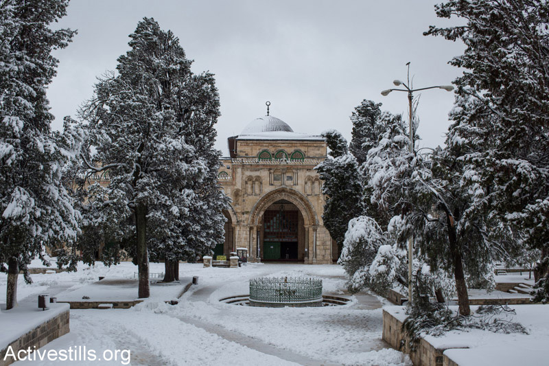 Snow covers the Aqsa Mosque compound in East Jerusalem, February 20, 2015. (Photo by Faiz Abu Rmeleh/Activestills.org)