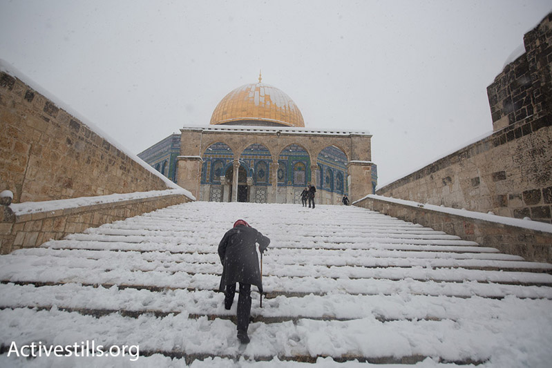An elderly man climbs snow-covered stairs leading up to the Dome of the Rock, East Jerusalem, February 20, 2015. (Photo by Faiz Abu Rmeleh/Activestills.org)