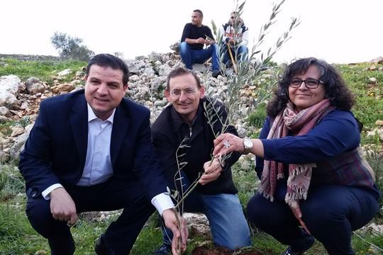 Iman Odeh, Dov Khenin and Aida Touma-Suliman of Hadash planting trees in Kfar Yassuf, February 4, 2015. (Photo: Ala Yediya)