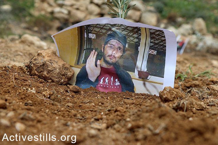 A photo of Tristan Anderson, an American activist, is seen on a newly planted olive tree. Israeli forces shot Anderson in the head with a high velocity tear gas canister in the village of Ni'lin village in 2009. He is permanently disabled and has suffered brain damage. (photo: Activestills.org)