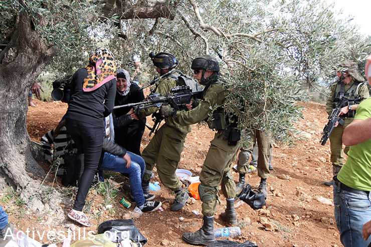 Israeli soldiers arrive at the event, attacking and arresting  participants.  (photo: Activestills.org)