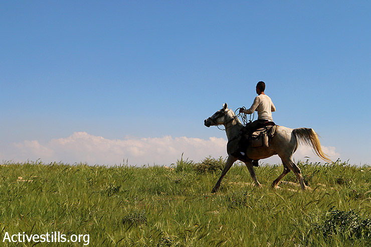 A Palestinian rides his horse in Area C in the northern Jordan Valley, West Ban, March 13, 2015. Israeli media recently reported that Israel plans to build another wall on the West Bank border with Jordan. The plan was revealed following the completion of a similar fence on the border with Egypt. Work on the wall is expected to begin in the summer of 2016. 88% of Jordan Valley lands is considered Area C, which is under full Israeli control. There are 27 Israeli settlements in Jordan Valley, which comprises 28% of the West Bank. (photo: Activestills.org)