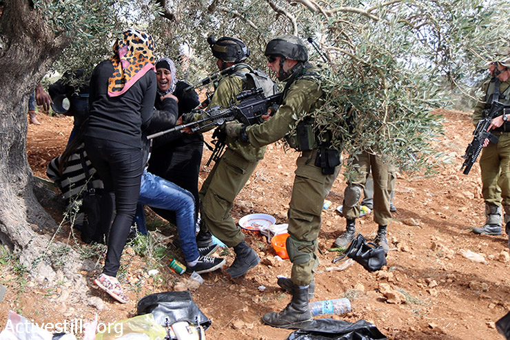Israeli soldiers attack Palestinians during an olive tree planting activity commemorating Rachel Corrie's death, Qariyut, West Bank, March 15, 2015. Corrie was an American activist who was crushed to death by an Israeli military bulldozer in 2003, as she tried to block the demolition of a Palestinian home in Rafah area, Gaza Strip. Two Palestinians were arrested during the activity by Israeli forces.  (photo: Activestills.org)