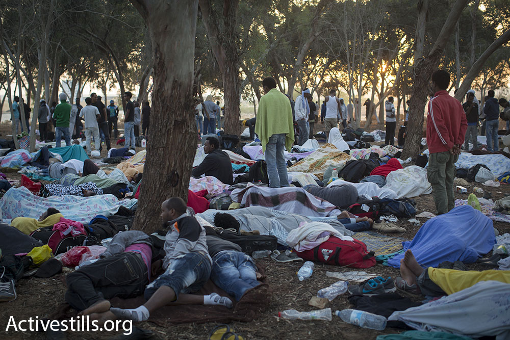 African asylum seekers sleeping in their encampment in the Nitzana Forest, before Israeli authorities came and arrested over 700 of them.