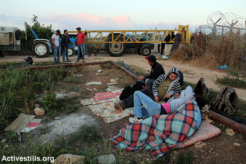 Palestinian farmers await the opening of an agricultural gate in the separation fence in Falamya village (Gate number 914), West Bank, June 14, 2015. (Activestills.org)