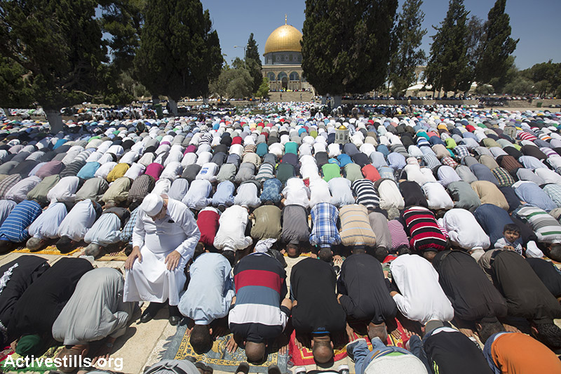 Palestinian worshippers pray inside the Al-Aqsa Mosque in Jerusalem during the first Friday of the holy month of Ramadan, June 19, 2015. (Activestills.org)