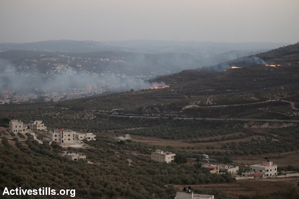 A view of Palestinian-owned fields that were set on fire by Israeli settlers in the West Bank village of Bur'in, near Nablus, October 3, 2015. (Ahmad Al-Bazz/Activestills.org)